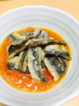 魚、魚、魚~を美味しくいただくおすすめレシピ!厳選5選!のサムネイル画像