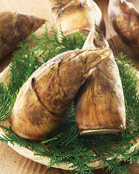 筍の季節到来!ところで筍のアク抜き方法はマスターしていますか?!のサムネイル画像
