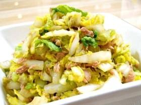 生で食べても美味しい白菜★たっぷりサラダで食べられるレシピ集のサムネイル画像
