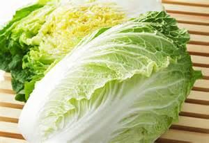 この野菜、嫌いな人いないんじゃないかな?白菜の簡単レシピ5選☆のサムネイル画像