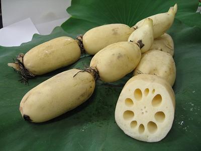 レンコンde美味しく簡単なお総菜☆人気レシピのおすすめ5選☆のサムネイル画像