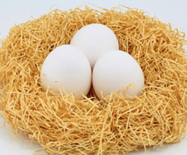 卵だけでもめっちゃ美味しい~!簡単お手軽卵だけレシピをご紹介のサムネイル画像