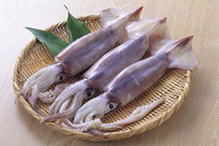 ぷりっとした食感で超美味♪これだけは知っておきたいイカの種類!のサムネイル画像