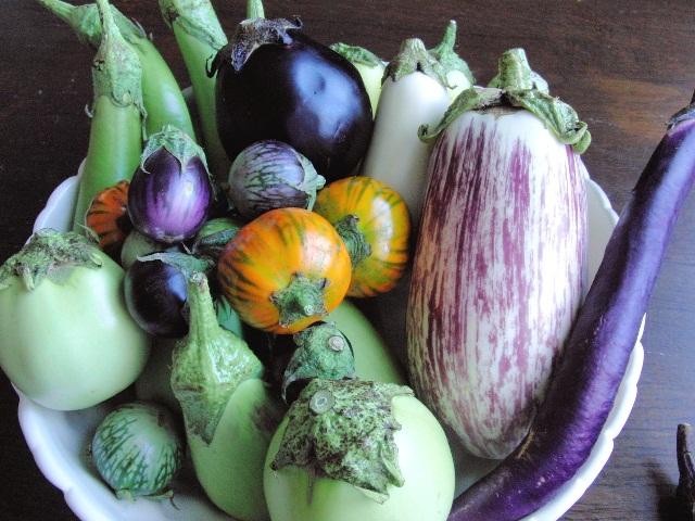 使える万能野菜!!なす特集♪和洋中バリエーション豊かななすレシピ!!のサムネイル画像