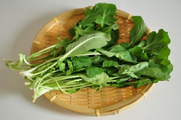 ほろ苦い大人の味♪ルッコラで作る簡単おかずレシピ5選まとめのサムネイル画像