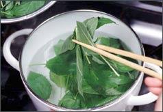 野菜の王様【モロヘイヤ】を美味しく食べる茹で方と保存方法をご紹介のサムネイル画像