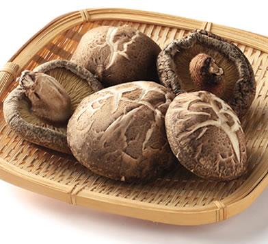 うまみたっぷり【干し椎茸】で作る♪簡単おかずレシピまとめのサムネイル画像