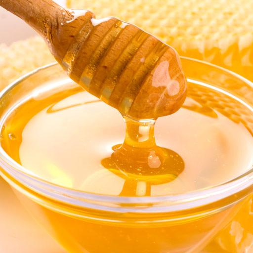 お砂糖よりも低カロリーな蜂蜜を、料理に使ってみませんか?のサムネイル画像