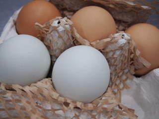 脱マンネリ!いつもとちがう調理法で。卵を使った絶品レシピ5選のサムネイル画像
