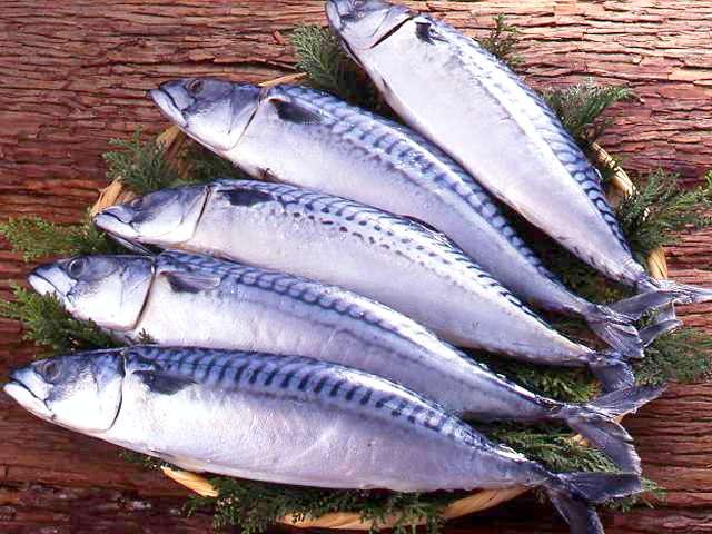 生活習慣病にも効果的!うれしい栄養たっぷりの人気の鯖レシピまとめのサムネイル画像