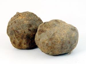 食物繊維豊富なとってもおいしい「つくね芋」のかんたんレシピのサムネイル画像