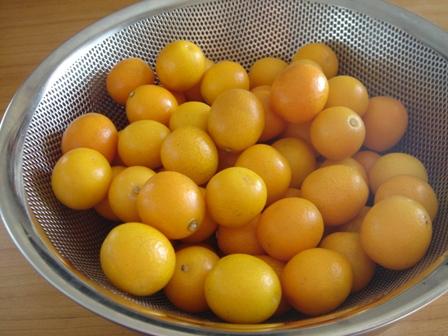 小粒な果実に詰まった甘味のカプセル!金柑の使った美味しい食べ方のサムネイル画像