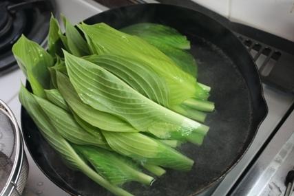 山菜 うるい