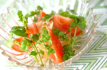 暑い夏の日でも食べれる、トマトを使ったサラダのレシピをご紹介のサムネイル画像