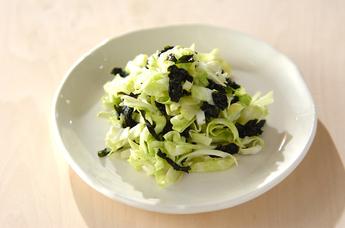 やわらかくて食べやすい!春キャベツを使ったサラダレシピ5選のサムネイル画像