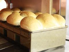 人気が止まらない!だれでも作れちゃう簡単パンレシピ集めましたのサムネイル画像