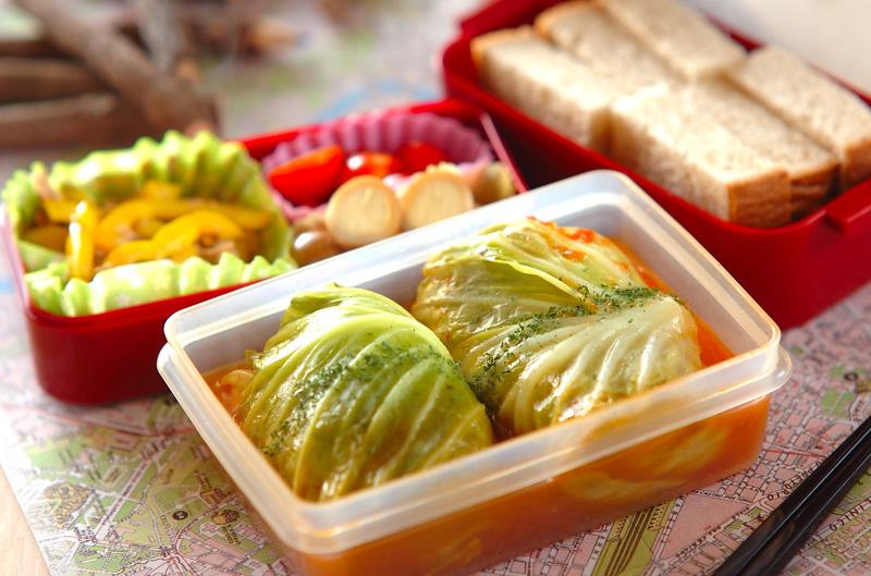 お弁当に便利!ちょこっと作れるキャベツを使った簡単おかずレシピのサムネイル画像