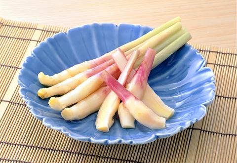 初夏の保存食に最適!おいしい生姜の甘酢漬けを作りませんか?のサムネイル画像