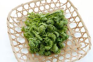 春の山菜♪こごみの下処理方法と天ぷらレシピを紹介致します!のサムネイル画像