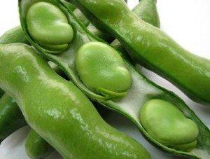 独特の香りが堪らない空豆!空豆を美味しく食べるレシピをご紹介!のサムネイル画像