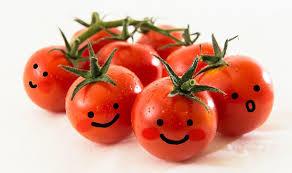 トマトのおいしさをたくさん引き出す人気レシピ5つご紹介!のサムネイル画像
