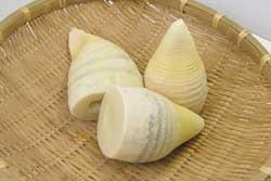 手軽にたけのこが堪能できる!たけのこの水煮を使った人気レシピ3選のサムネイル画像