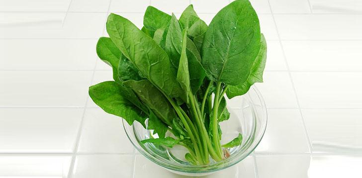 豊富な栄養を逃がさない!ほうれん草は冷凍保存が向いている!?のサムネイル画像