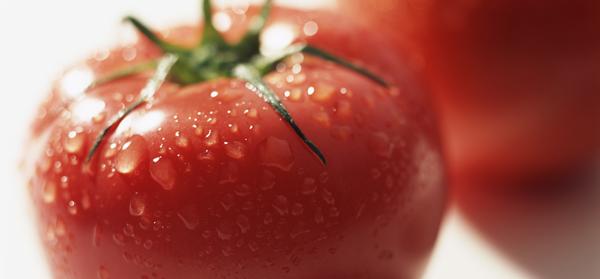 トマトは食べ過ぎると危険?食べ過ぎによる影響や効能をご紹介!のサムネイル画像