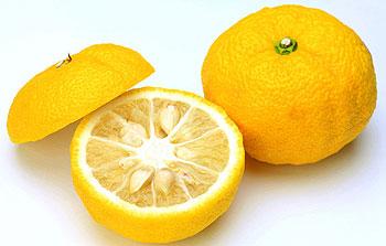 さわやかな香りが漂う!アレンジし放題、ゆずの簡単レシピ5選!のサムネイル画像