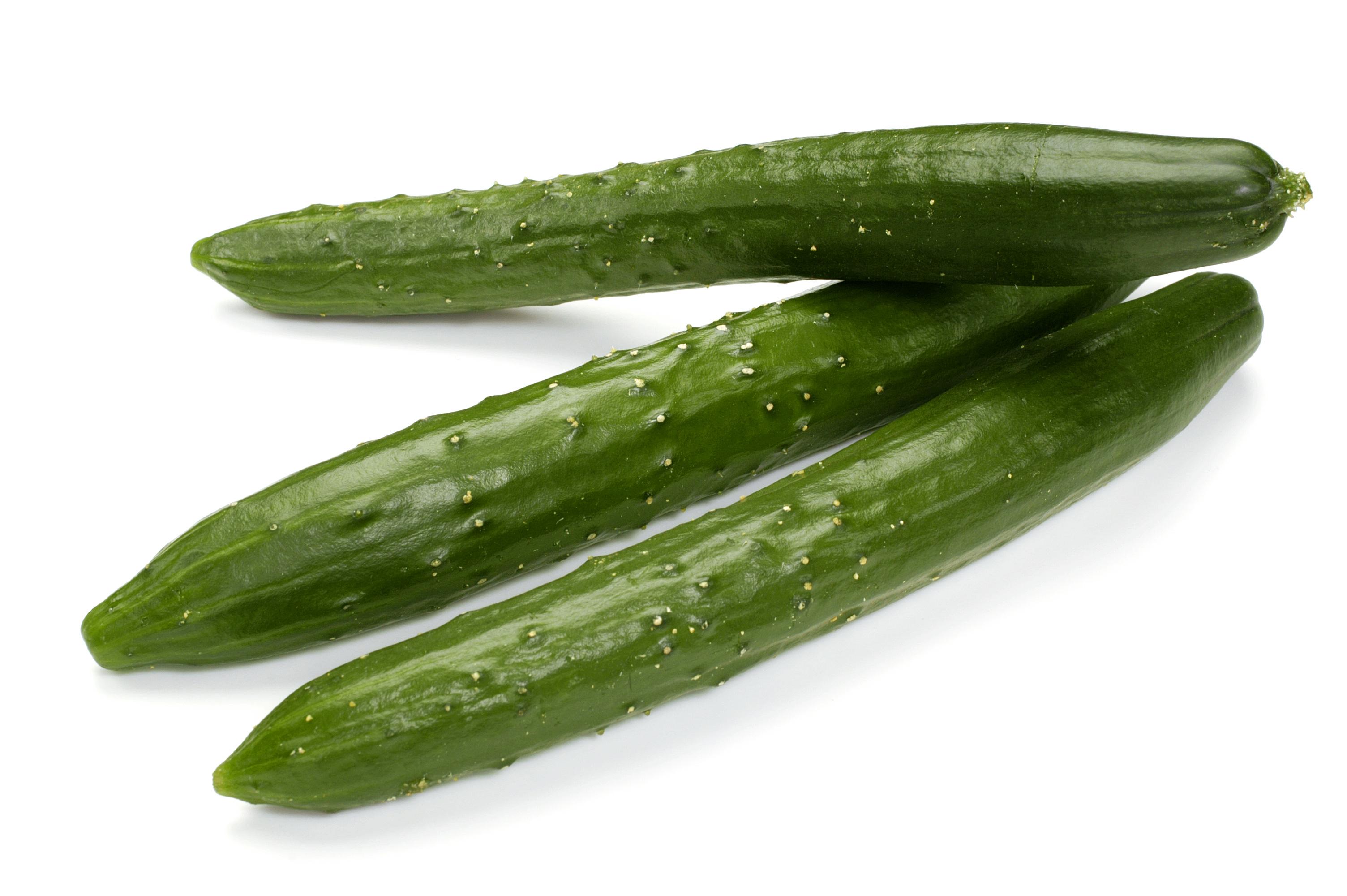 さっぱりと食べたい!いつでも簡単に作れるきゅうりレシピ5選!のサムネイル画像